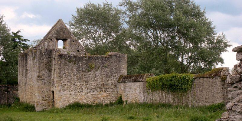 Godstow Abby walls
